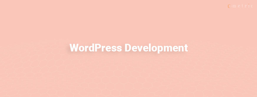 Top 7 Effective Enterprise WordPress Development 2019